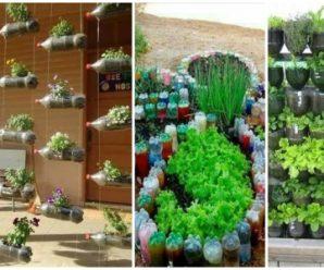 Decora y Embellece tu Jardín con Macetas de Plástico Reciclado