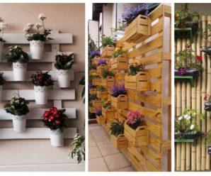 Renueva las paredes de tu patio, con plantas colgantes